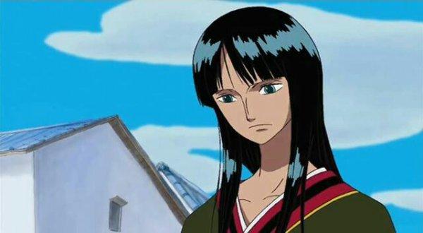 Nico Robin - Episodes fillers 291; 292 & 303, Le retour du Boss Luffy