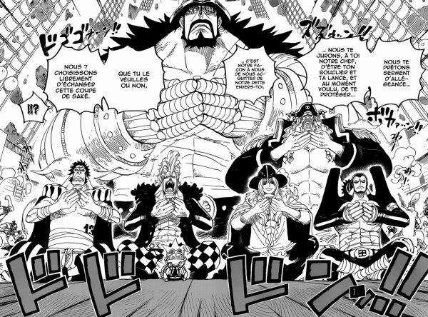 Les 7 Capitaines alliés de Luffy et les nouvelles primes de l'équipage du Chapeau de Paille