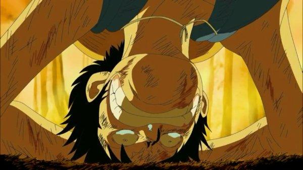 Monkey D. Luffy - Arc Archipel Sabaody