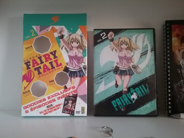 Fairy Tail Collection vol. 2 + ses goodies
