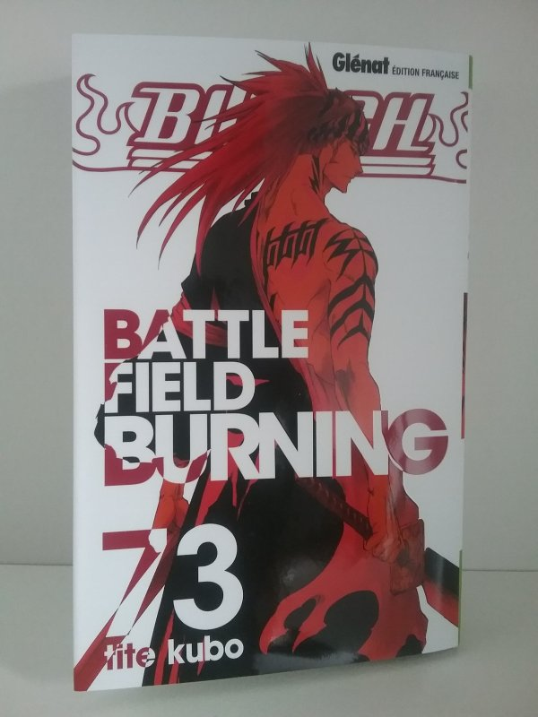 Fairy Tail tome 57 & Bleach tome 73 - Collection
