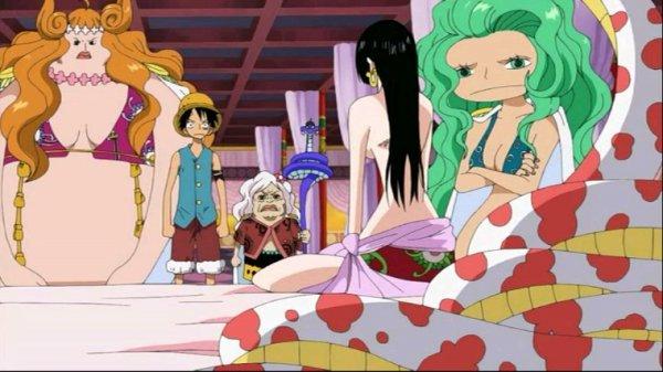 Luffy, Hancock, Nyon, Marigold & Sandersonia - Arc Amazon Lily