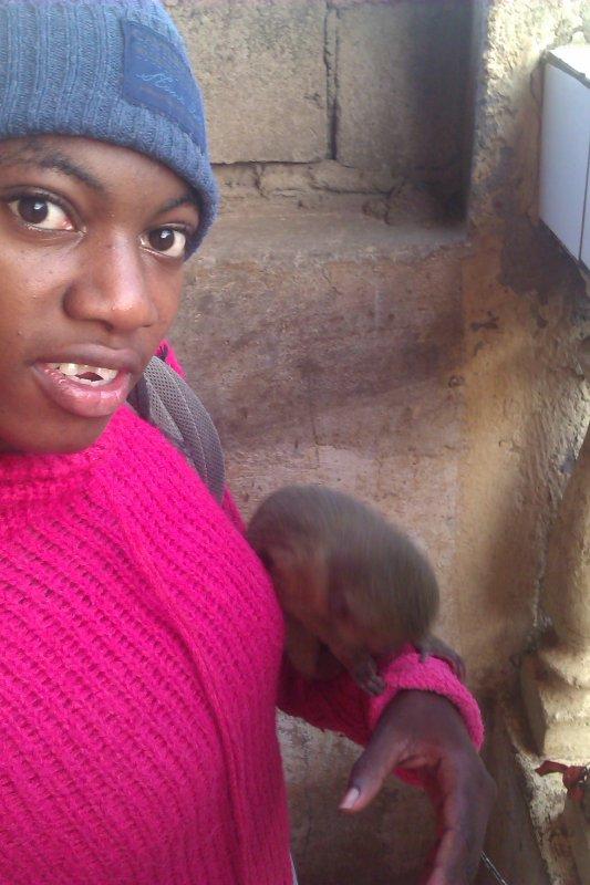 mon petit singe