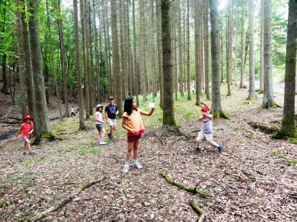 jeux dans les bois