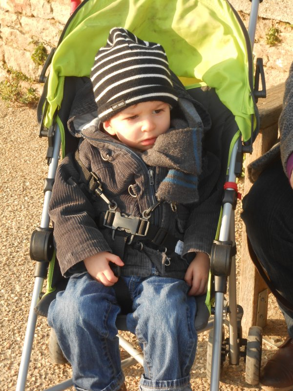 4 mars 2013 : Ylan, Alex et Léo 26 mois