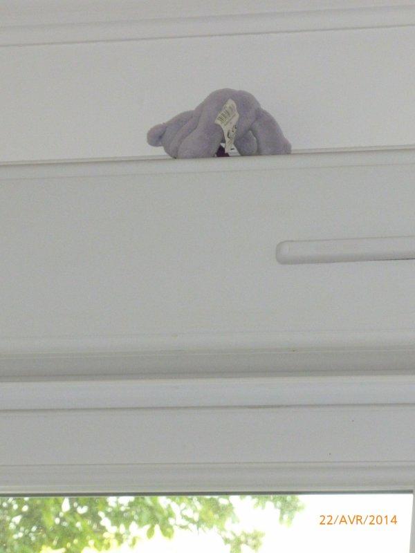 22 avril 2014 : Quand Ylan lance une peluche et essaye de l'attraper ...