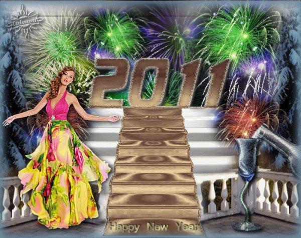 (l)passer une bonne année,que de bonne choses pour vous en cette nouvel année2011(l)