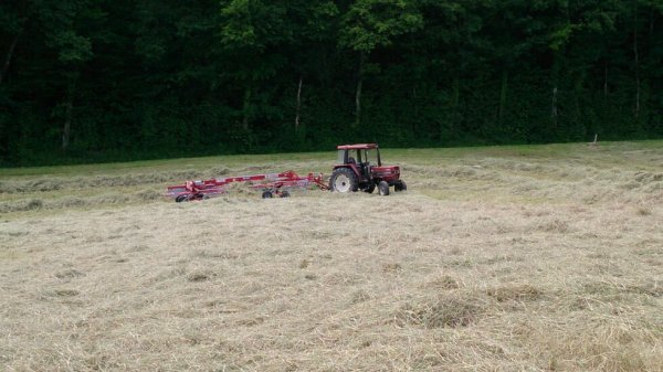 Case IH 633 avec andaineur Stoll
