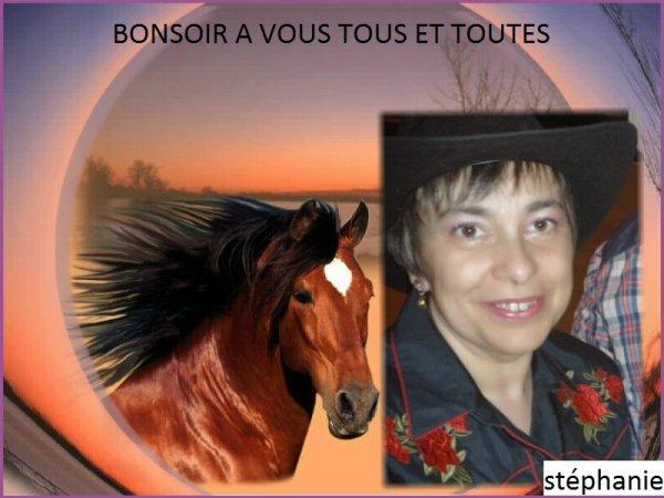 BONSOIR AMIS ET AMIES DE LA COUNTRY .