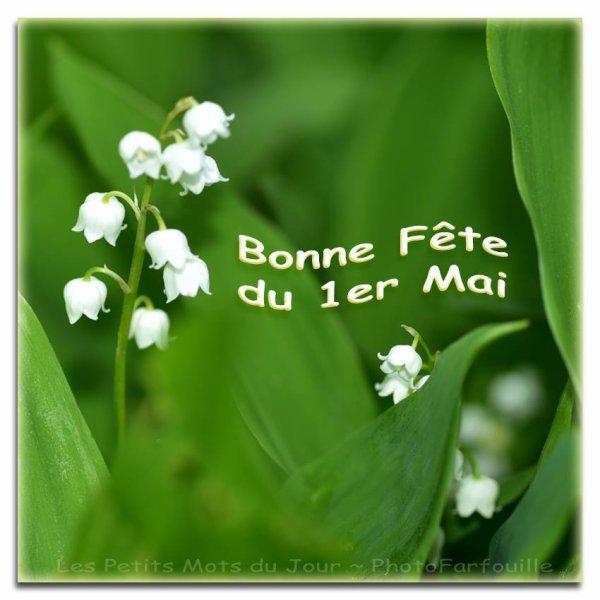 Bon 1er mai à tous....