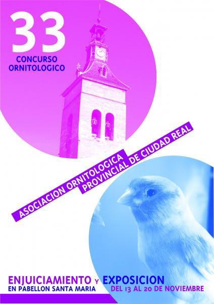 CONCURSO PROVINCIAL DE CIUDAD REAL