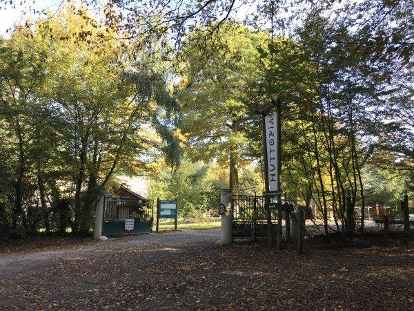 retour sur la sortie du13/10 Forêt de Rambouillet