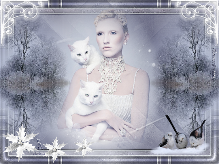 ♥ Chattes blanches ♥