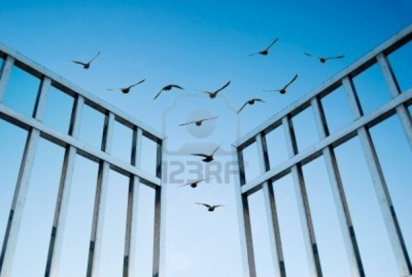 (l) vive la liberté (l)
