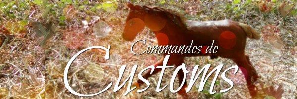 Commande de customs! <3