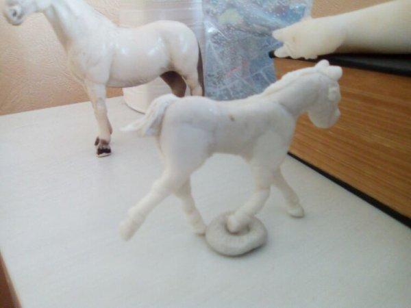 Un petit poulain pour mon projet !
