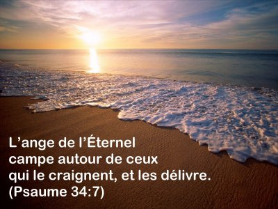 PSAUME 34 V 7