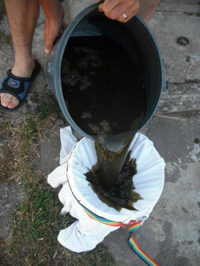 Fabrication d'un purin d'ortie