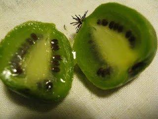 fruits et légumes d'ailleurs