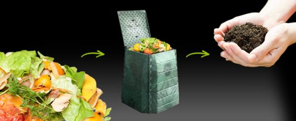 Lombrics - Vers de compostage