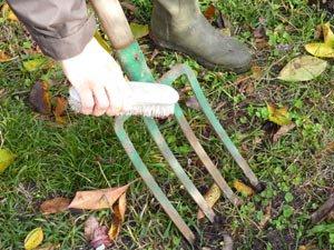 Nettoyer vos outils de jardin, c'est indispensable !