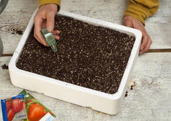 il est temps de semer à l'abris