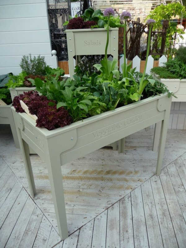 Cultiver ses légumes sans avoir à se baisser, c'est possible !