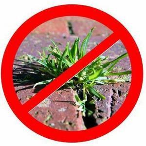 Herbicide maison écologique