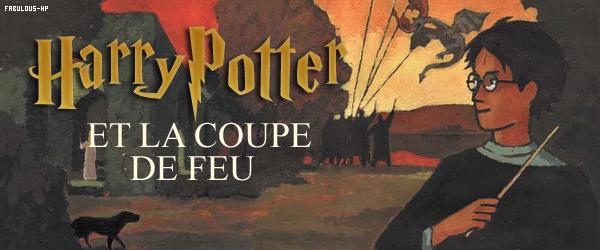 HARRY POTTER ET LA COUPE DE FEU : LE LIVRE