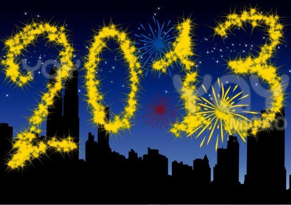 bonne année 2013 en espérant qu'elle soit tout comme moi meilleur que 2012!!!!