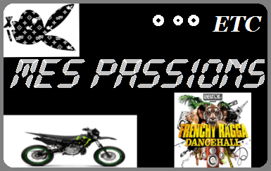 ♥ Mes passions ♥