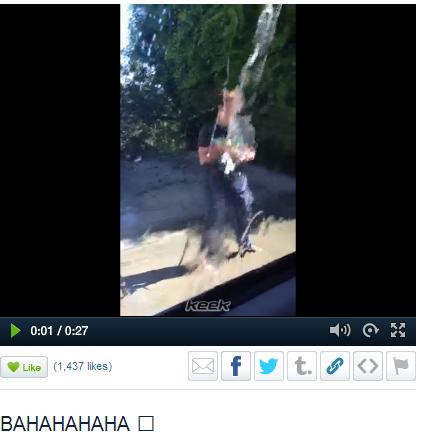 16/09/2013 - Quatre vidéos en ligne + 1 vidéo Keek