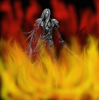 L'incendie de Nibelheim