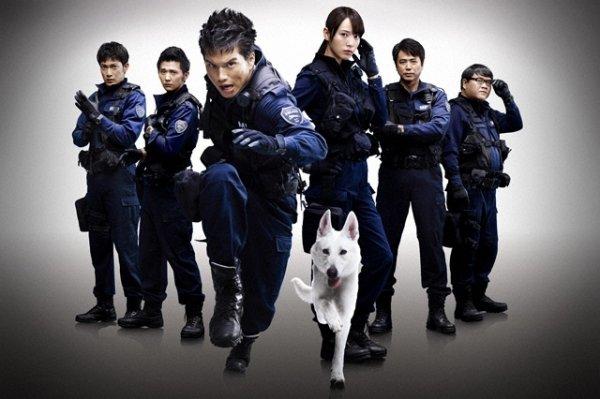 Film: Dog & Police: The K-9 Force