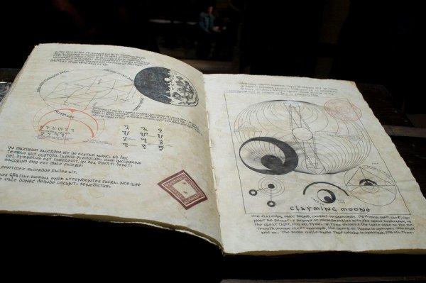 ■ [ Sublimes Créatures ]  Un cliché du Livre des Lunes !
