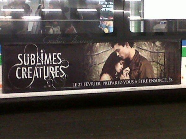 ■ [ Sublimes Créatures ]  La campagne Sublimes Créatures en France