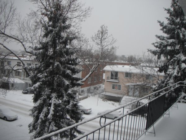 dimanche 25 décembre 2011 16:29