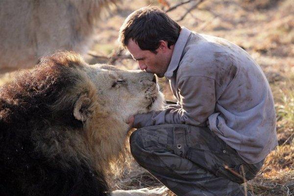 Kevin Richardson, l'homme qui murmurait à l'oreille des lions