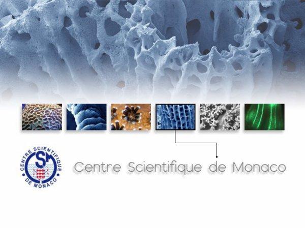 Vendredi 9 décembre nous accueillons en salle de conférences les « Séminaires du Centre Scientifique de Monaco ». Les conférenciers : Dr Sumaila Rashid de l'Université de Colombie Britannique et le Dr. Taviani Marco de l'Université de Bologne, de l'Institut des Sciences Marines ; débattront sur « Les impacts économiques potentiels du changement climatique et l'acidification des océans sur l'Arctique» à 14h pour le Dr Sumaila et de poursuivre à 15h15 sur les « coraux Méditerranéens d'eaux profondes: passé et présent » par le Dr Taviani. Ces conférences sont ouvertes à tous.