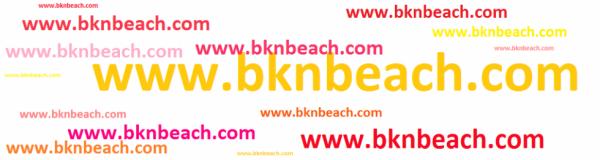 WWW.BKNBEACH.COM
