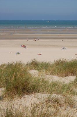 Les dunes à Bray dune