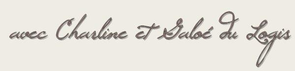 -La mascotte du Blog-