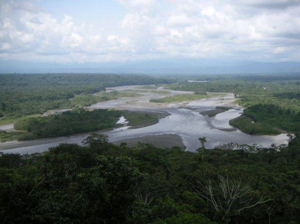 _•__________L'Amazonie, le poumon de la planète__________