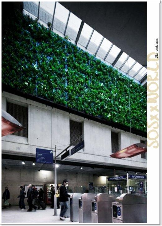 _Première mondiαle : un mur végétal dépolluαnt dαns une gαre SNCF _