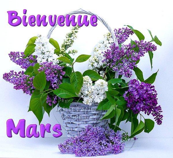 Au revoir Février - Bonjour Mars - Bon Weekend à Toutes et à Tous