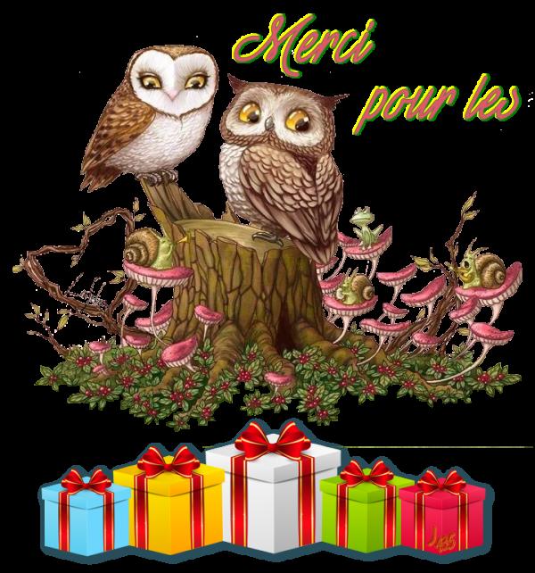 Merci Rollande pour tes Cadeaux