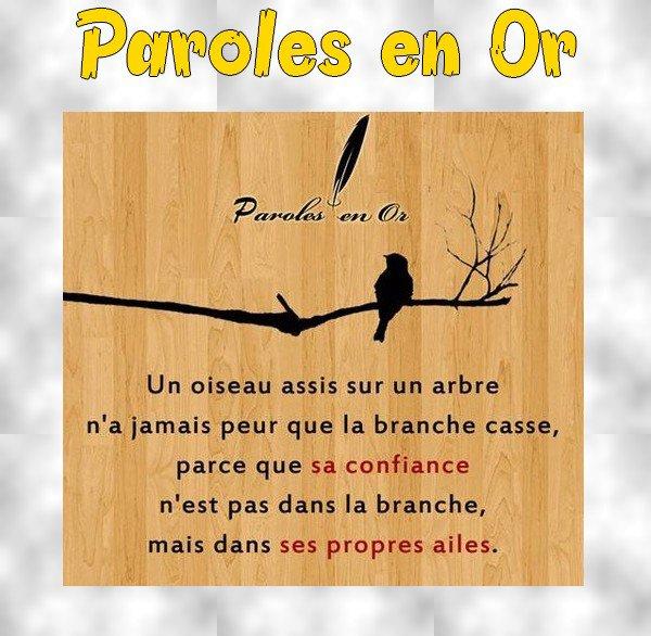 """-- Oyez, Lisez, Bonnes Gens : """"Les Paroles en Or"""" --"""
