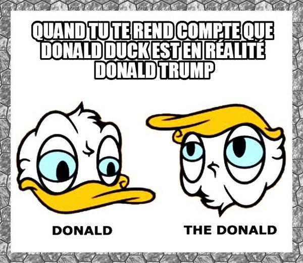 -- Les Deux Canards Américains --