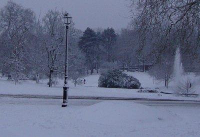 le parc sous la neige .