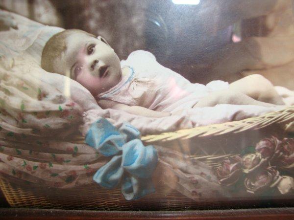 ma collection de bébés dans leurs jolis berceaux .